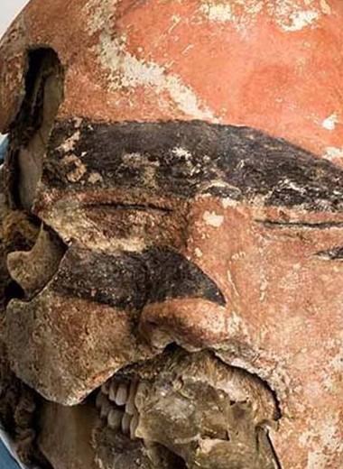 На черепе древнего таштыка нашли следы хирургического вмешательства