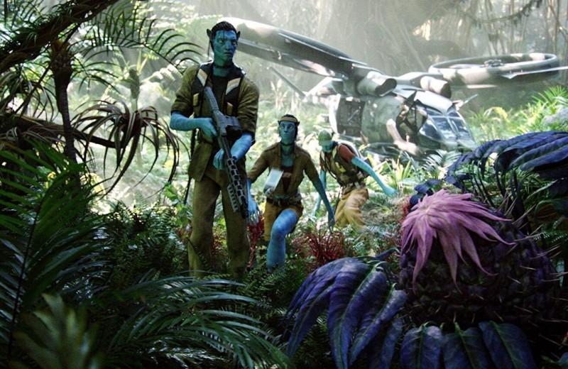 Какого цвета будет растительность на других планетах