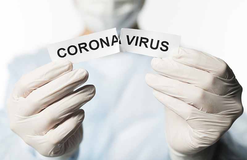 Пандемия как выход