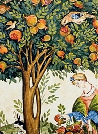 «Карфагенское» яблоко