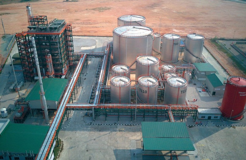Русское «зеленое» масло в Малайзии