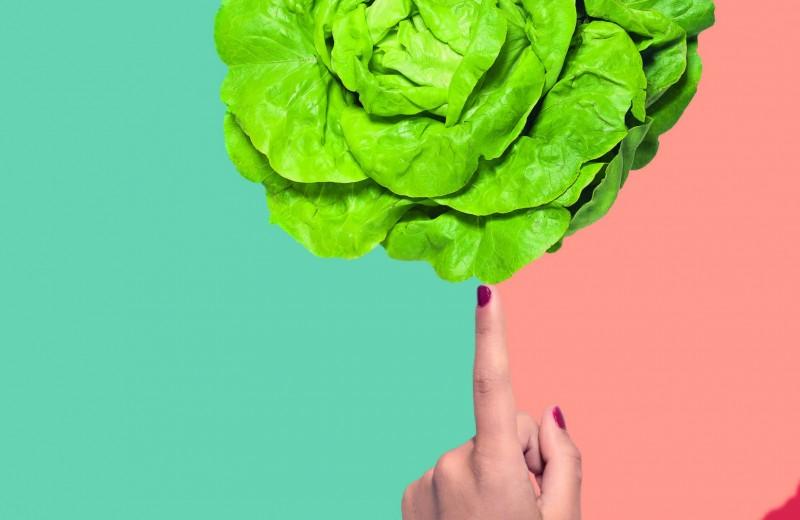 Что нужно знать о здоровье печени?