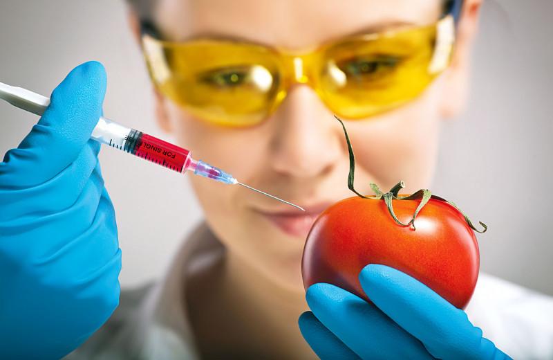 ГМО в продуктах: мифы и реальность