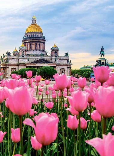 Бесконечная история в Санкт-Петербурге