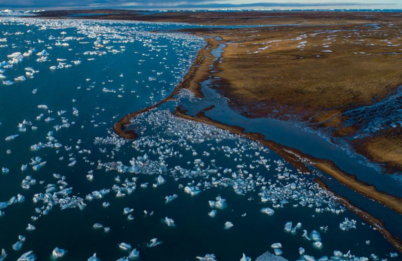 Внимание,Арктика