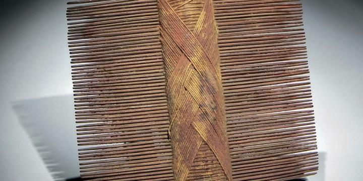 Тайна гребня из древнего Чили