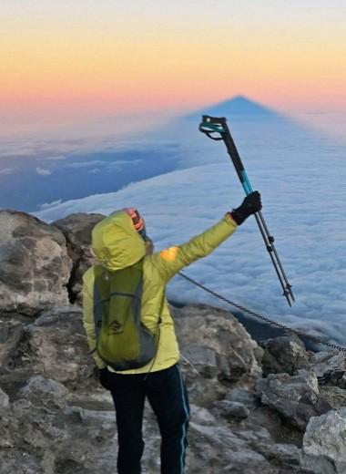 Тенерифе: подняться на вулкан и полюбить суккуленты