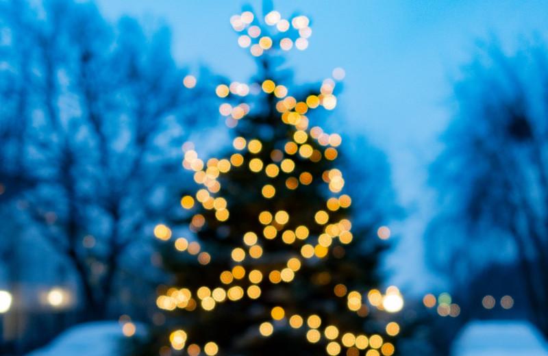 Дед Мороз —полярник
