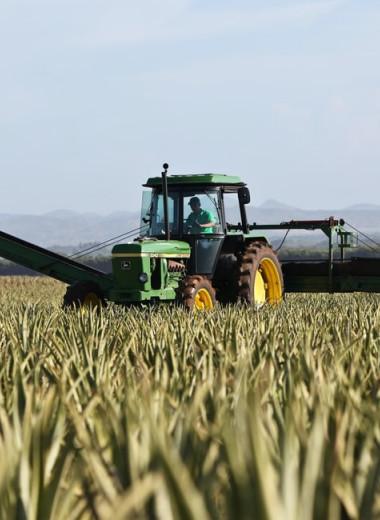 «Агроинвестор» расширяет компетенции