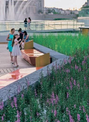 Самоорганизация горожан на берегу самоочищающегося озера