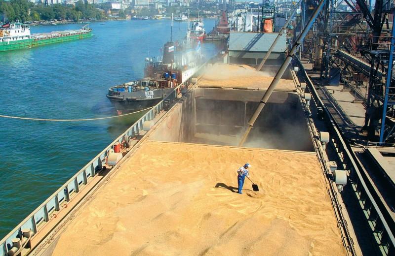 Зерновую отрасль испытывают регулированием