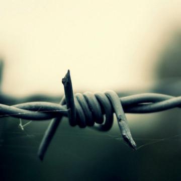 Судьба пленных