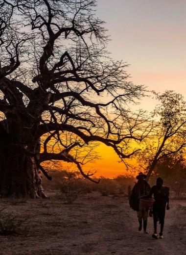 Установить контакт: в поисках «затерянных» племен Анголы