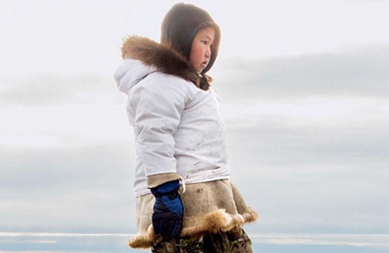 Что происходит в Арктике?