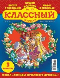 Классный журнал №13
