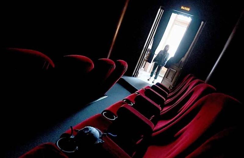 «Четверть кинотеатров не переживут кризис»