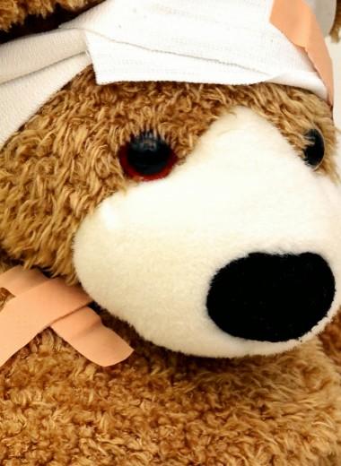 Некоторые наблюдения над болезнями медведя домашнего