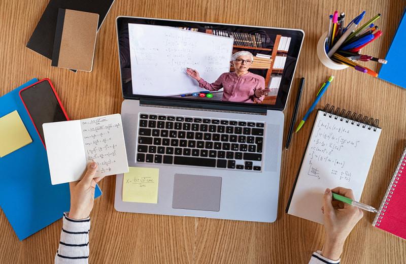 Обучение в Сети: дистанционное образование с точки зрения психологии