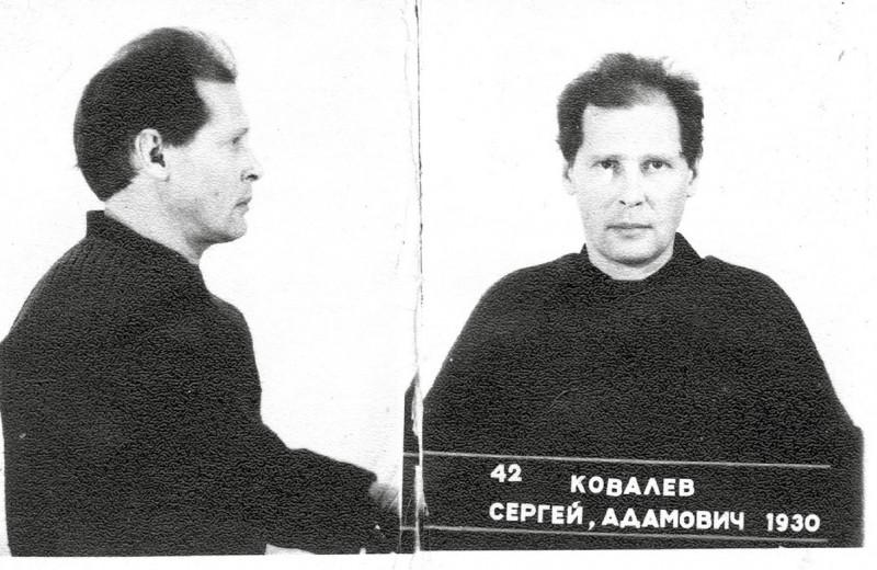 Литовское дело Сергея Ковалёва