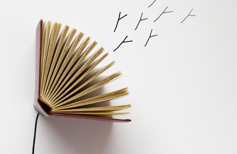 Литературная критика