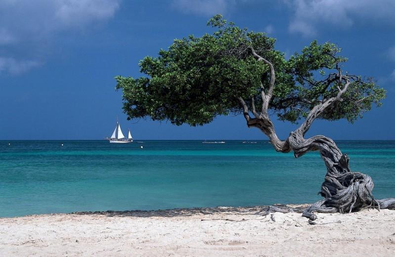 Тот самый остров