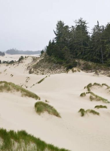 История, построенная на зыбучем песке