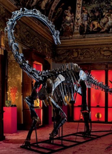 Комнатный динозавр