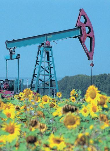 Путь нефтегаза к углеродному net zero