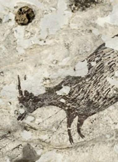 Археология в 2019 году: несколько интересных находок