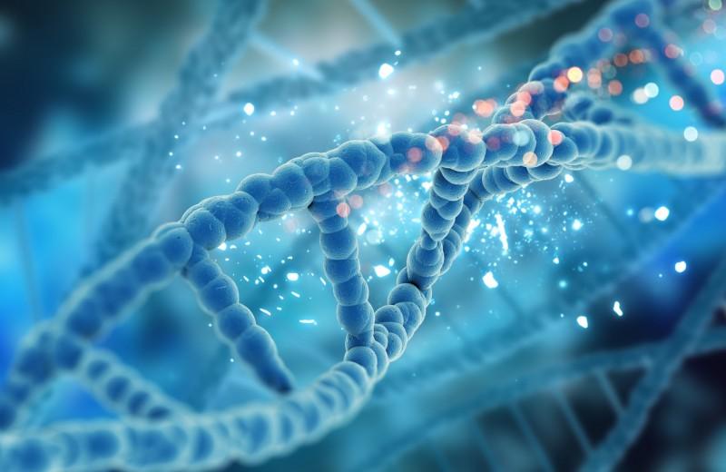 Дизайнерские дети: ожидать ли нам ГМО-поколения?