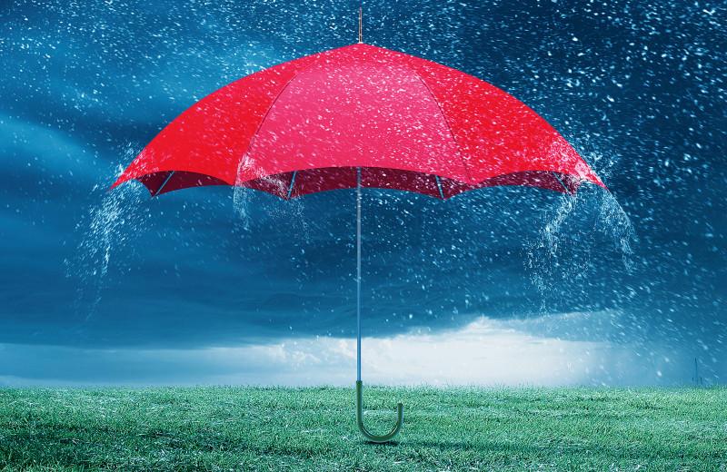 Каков прогноз: дожди или туманно…