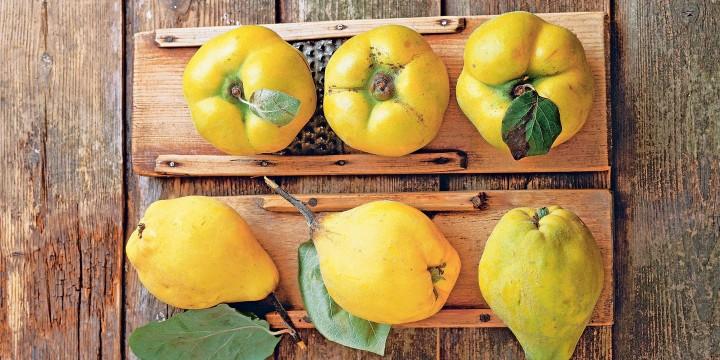 Золотой фрукт