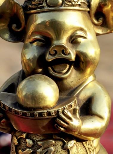 Мудрость Золотой Свиньи