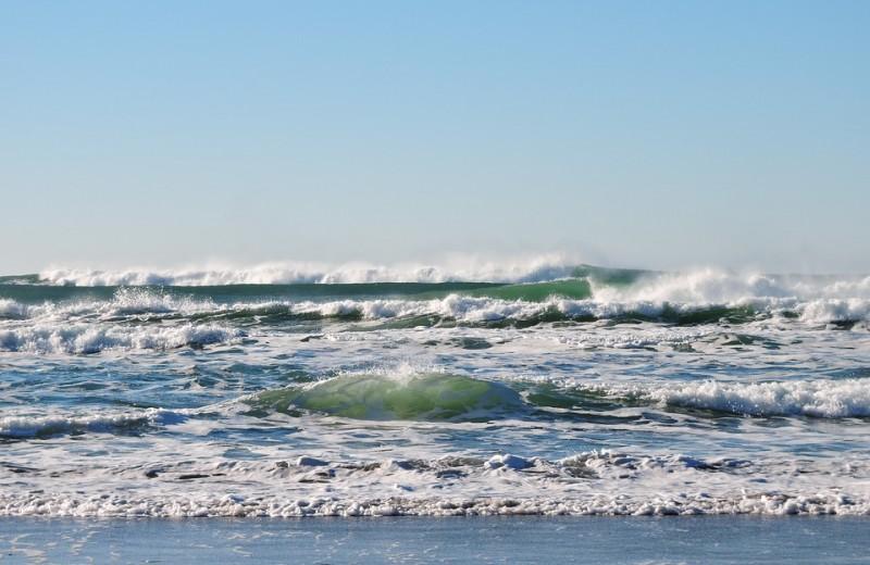 Океаны на грани срыва