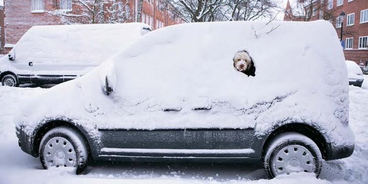 Как избежать ДТП зимой:  8 реальных ситуаций