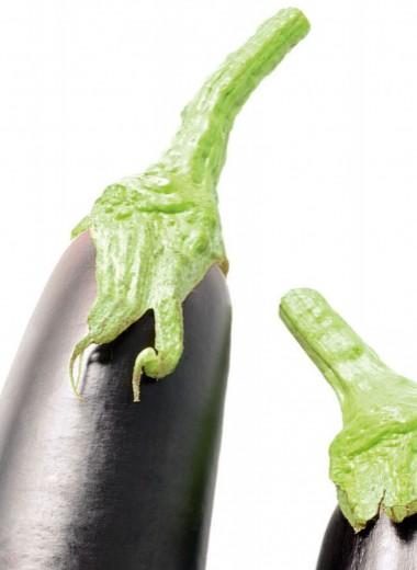 Он вам не овощ!