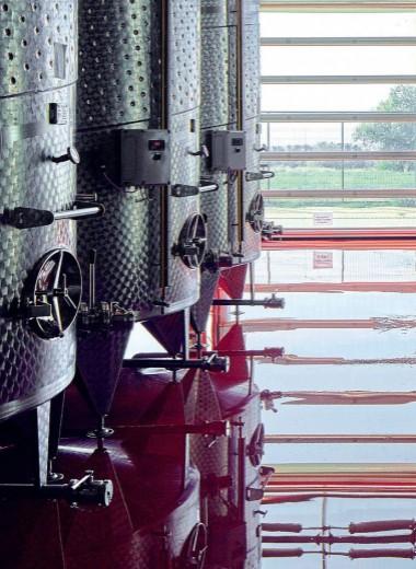 6 вопросов виноделу