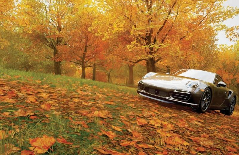 7 способов отлично провести время в Forza Horizon 4