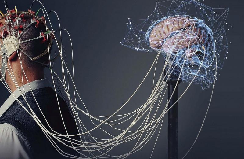 Чтение и перезапись мозга