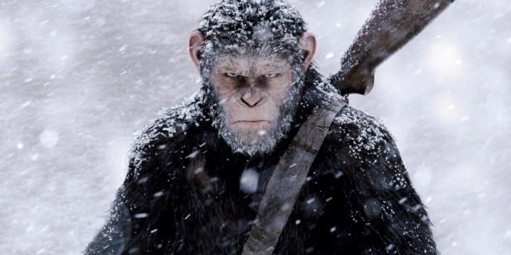 После финальных титров | Планета обезьян: Война