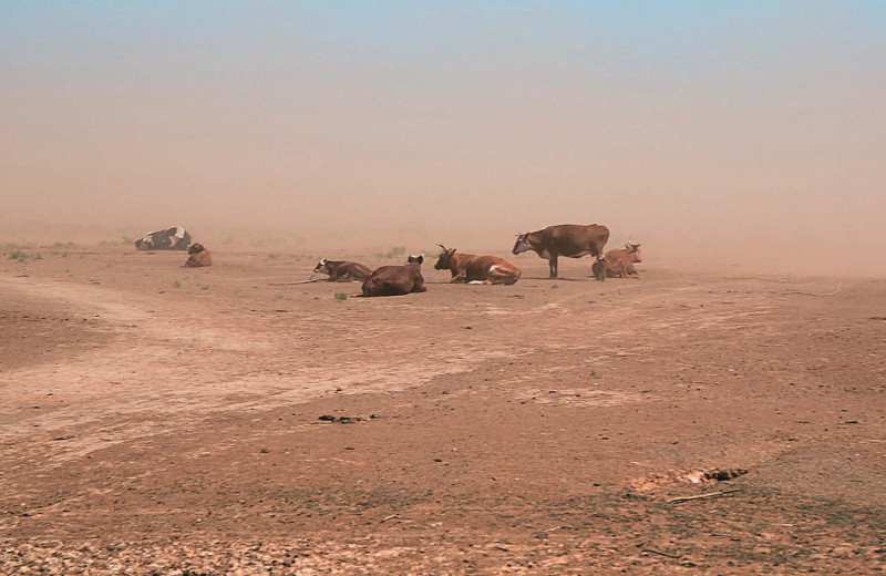 Пыльные бури — взгляд из космоса