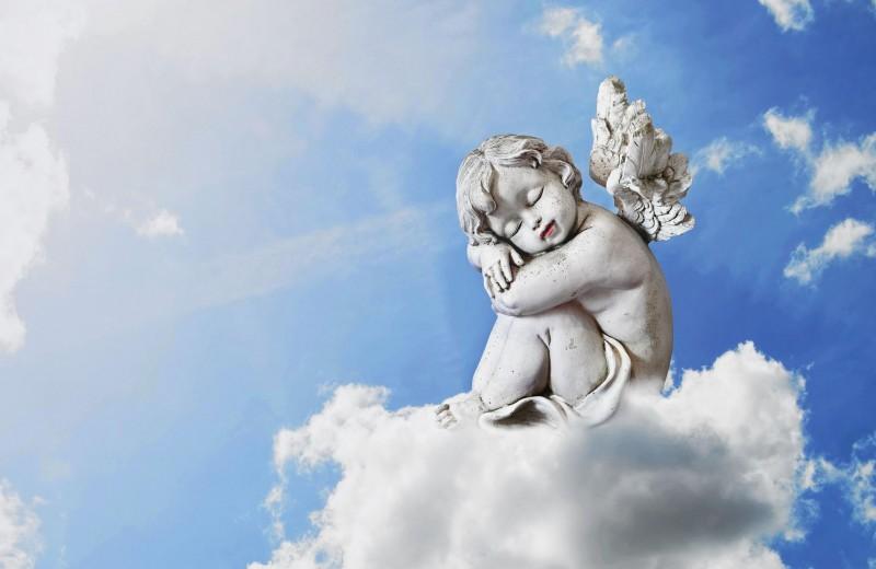 Под крылом ангела-хранителя