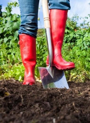 Городить огород