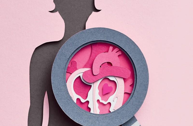 Женское сердце: что вам нужно знать?