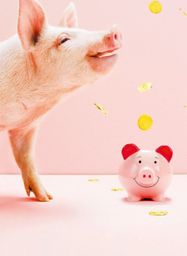 Ваш финансовый план на год