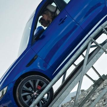 Jaguar F-Pace Вышел на тропу