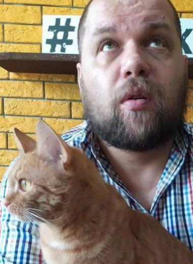 Кот доступа