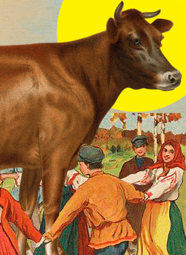 Корова остается жива
