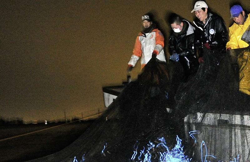 Япония: Свет бездны