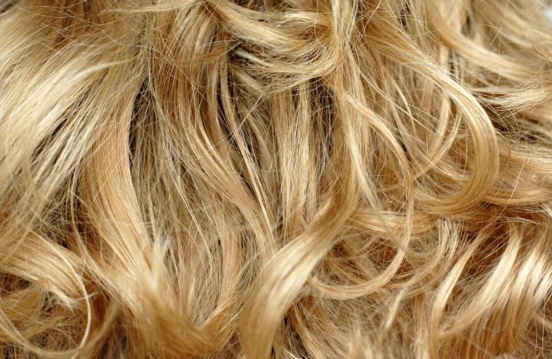 Вся правда о блондинках …и о мужчинах, которые от них без ума